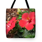 Tropical Hibiscus - Starry Wind 01 Tote Bag