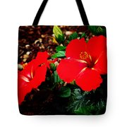 Tropical Hibiscus - Starry Wind 01a Tote Bag