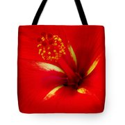 Tropical Hibiscus - Starry Wind 02a Tote Bag