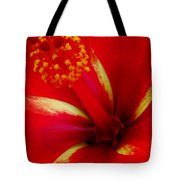 Tropical Hibiscus - Starry Wind 03a Tote Bag