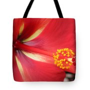 Tropical Hibiscus - Starry Wind 04 Tote Bag