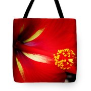 Tropical Hibiscus - Starry Wind 04a Tote Bag
