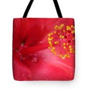 Tropical Hibiscus - Trinidad Wind 02 Tote Bag