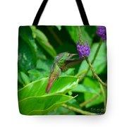 Tropical Hummingbird Tote Bag