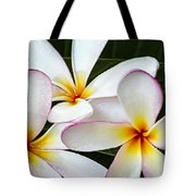 Tropical Maui Plumeria Tote Bag