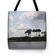 Tropical Palms And Clouds Tote Bag