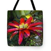 Tropical Plant Colors Tote Bag