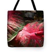 Tropical Rain - Botanical Art By Sharon Cummings Tote Bag