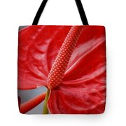 Tropical Red Anthurium Tote Bag