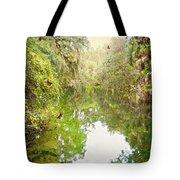 Tropical Treasure Tote Bag
