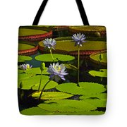 Tropical Water Lily Flowers And Pads Tote Bag
