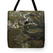 Trout Feeding Surface Rainbow Trout Art Prints Tote Bag