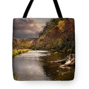 Trout Fishing Tote Bag by Tamyra Ayles