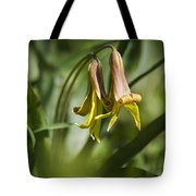 Trout Lily Flowers Tote Bag