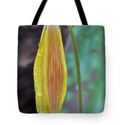 Trout Lily In The Rain Tote Bag