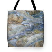 Trout Pond Abstract Tote Bag