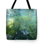 Trout Pond Tote Bag