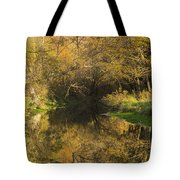 Trout Run Creek Fall 2 Tote Bag