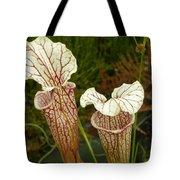 Trumpet Flower Tote Bag