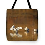 Trumpeter Ballet Tote Bag by Mike  Dawson
