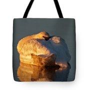 Trumpeter Swan On Swan Lake Tote Bag