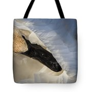 Trumpeter Swan - Safe Place Tote Bag