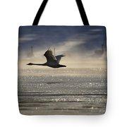 Trumpeter Swan Silhouetted In Flight Tote Bag