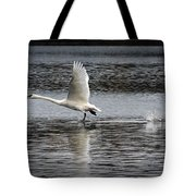 Trumpeter Swan Walking On Water Tote Bag