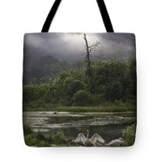 Trumpeter Swans At Sunrise Tote Bag
