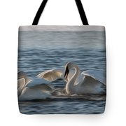 Trumpeter Swans Playing Tag Tote Bag