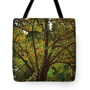 Trunk Of Life Tote Bag