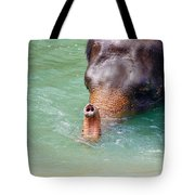 Trunk Up Tote Bag