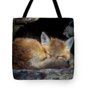 Fox Kit - Trust Tote Bag