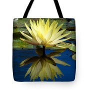 Truth Reflected Tote Bag