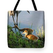 Trying To Catch... Tote Bag