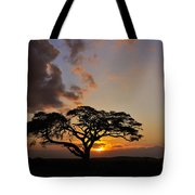Tsavo Sunset Tote Bag