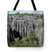 Tsingy De Bemaraha Madagascar 1 Tote Bag
