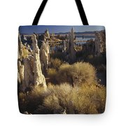 Ttufa Formations Mono Lake California Tote Bag