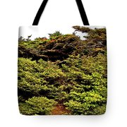 Tuckamore At Green Point Coastal In Gros Morne Np-nl Tote Bag