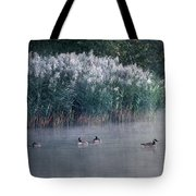 Tucked Away Tote Bag by Skip Willits