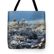 Tucson Covered In Snow Tote Bag