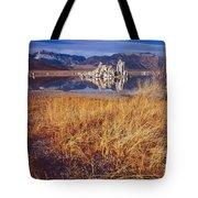 Tufa And Frozen Grass-h Tote Bag
