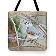 Tufted Titmouse - Baeolophus Bicolor Tote Bag