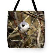 Tufted Titmouse On The Watch Tote Bag
