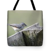 Tufted Titmouse With Seed Tote Bag