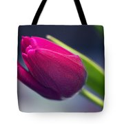 Tulip 2a Tote Bag