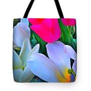 Tulip 35 Tote Bag