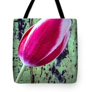 Tulip Against Green Wall Tote Bag