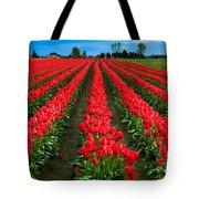 Tulip Cornucopia Tote Bag