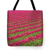 Tulip Festival In Mount Vernon Tote Bag